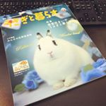 usaichi_staff