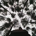 sukron_mash