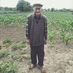 loredana_vlaescu