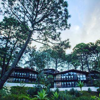 hotelmonteverde