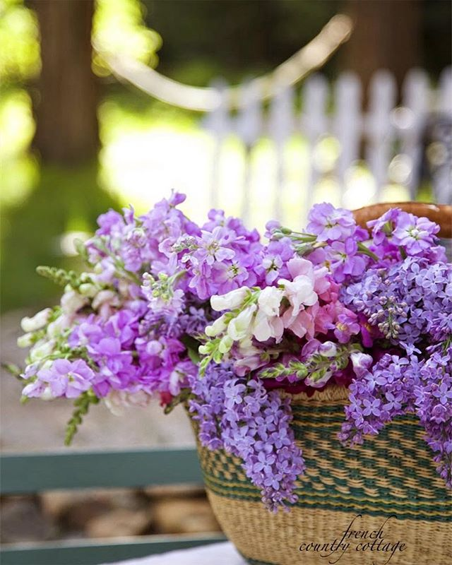 Wishing You A Beautiful Blessed Sunday Happy Easter Lilac Easter