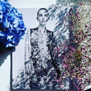 glimpses_at_fashion