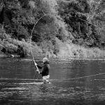 ltsflyfishing